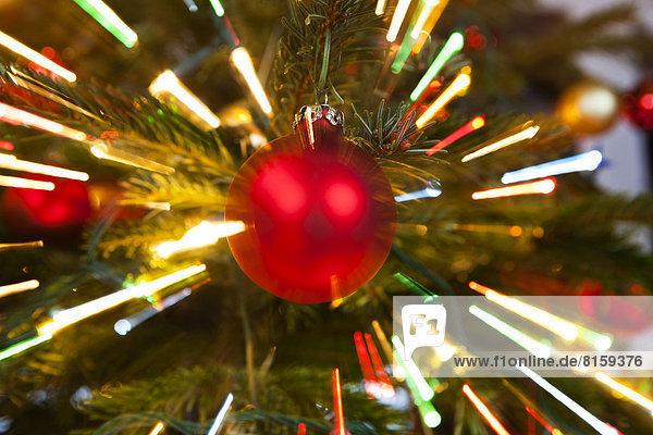 Rote Weihnachtskugel am Baum  Nahaufnahme