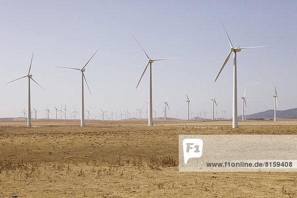 Spanien  Ansicht der Windkraftanlage auf dem Feld