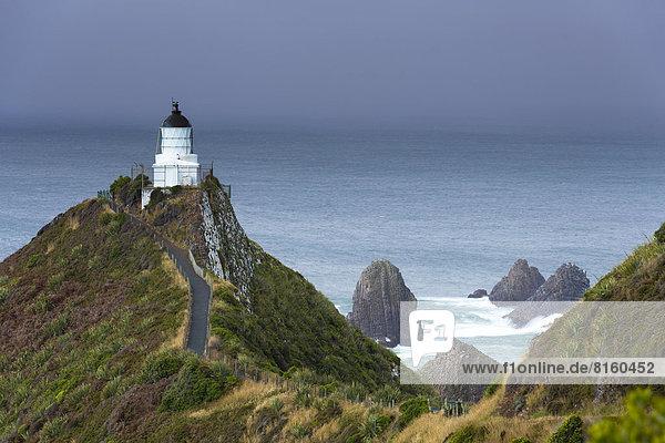 Der Leuchtturm am Nugget Point