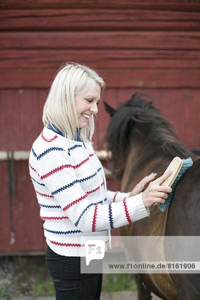 Young woman brushing horse