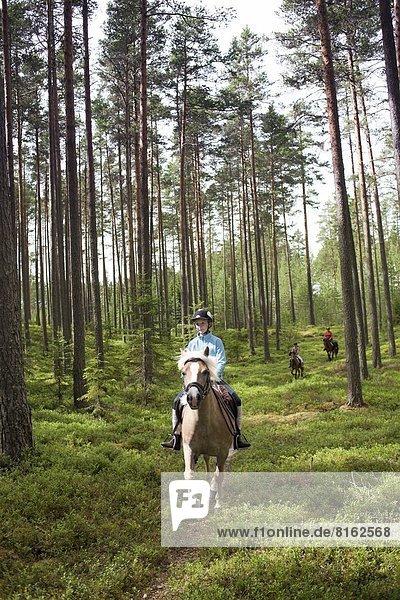 fahren  Wald  reiten - Pferd  Mädchen