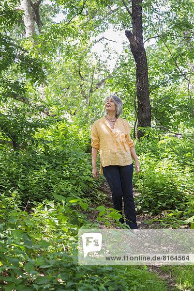 Senior  Senioren  Frau  Wald  wandern