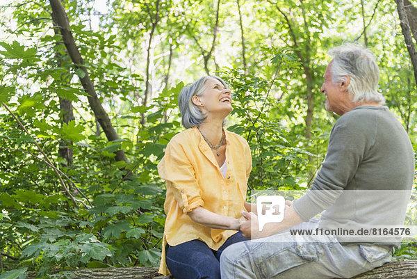 sitzend  Senior  Senioren  Wald