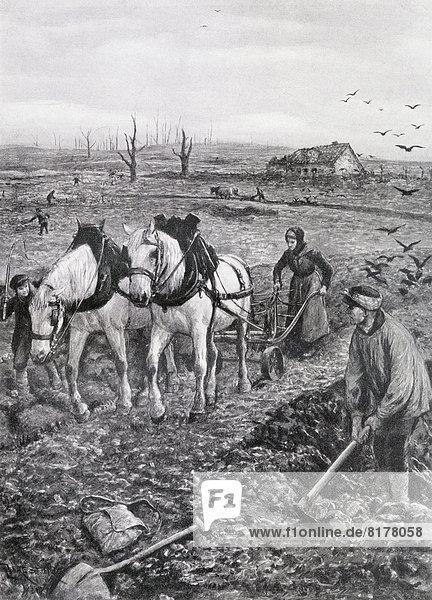 arbeiten  französisch  Erde  Feld  Bewegung  Krieg  Vernichtung  Start  Belgien  Landwirtin  Jahr