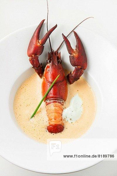 Crawfish Bisque (Hummersuppe  USA)