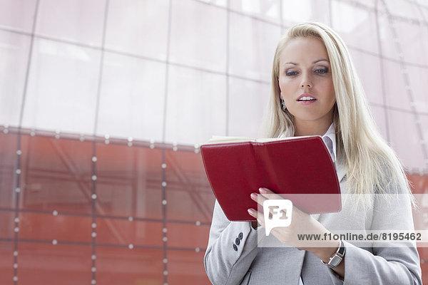 stehend  Geschäftsfrau  Schönheit  Gebäude  Büro  jung  vorlesen
