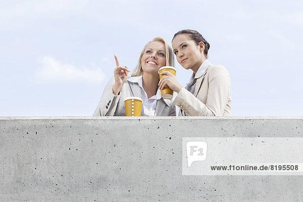 niedrig  stehend  Geschäftsfrau  sehen  Tasse  Himmel  Ansicht  jung  Flachwinkelansicht  wegsehen  Reise  Terrasse  Kaffee  Winkel  Wegwerfartikel