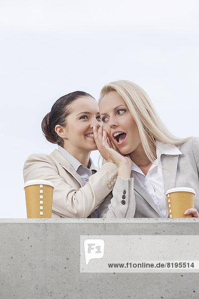 niedrig  stehend  Geschäftsfrau  Fröhlichkeit  Tasse  teilen  Himmel  Ansicht  Flachwinkelansicht  Terrasse  Kaffee  Geheimnis  Winkel  Wegwerfartikel