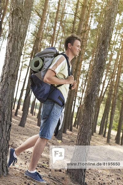 Rucksack  gehen  Wald  wandern  Ansicht  Länge  Seitenansicht  voll