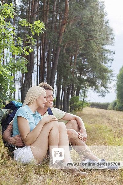 sehen  Entspannung  Wald  wandern  wegsehen  Reise  Romantik