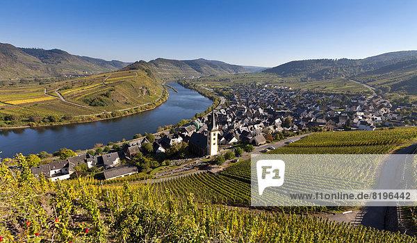 Deutschland  Rheinland-Pfalz  Blick auf die Stadt Bremm an der Mosel