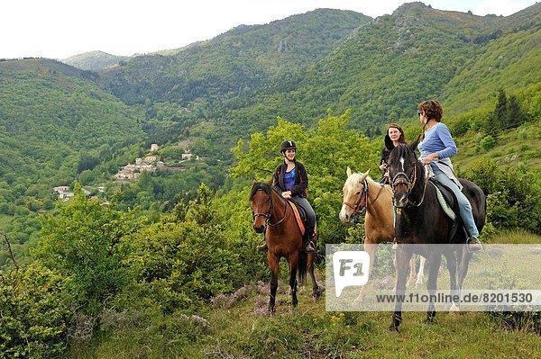 Frankreich  Europa  Berg  reiten - Pferd  mitfahren