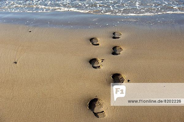 Schuhabdrücke am Strand