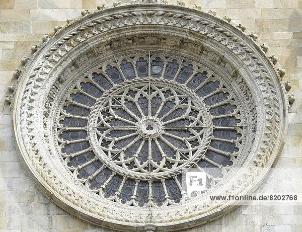 Detail Details Ausschnitt Ausschnitte Kathedrale Como