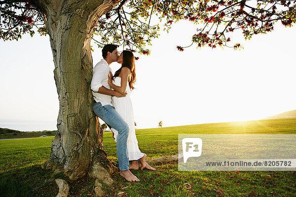 Baum  küssen