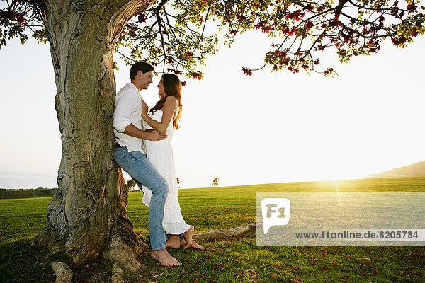 umarmen  Baum