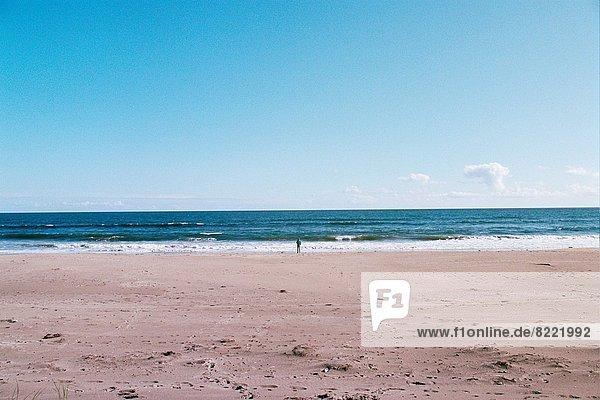 nahe  Wasserrand  stehend  Mann  Strand  Norden  zeigen  Kalifornien
