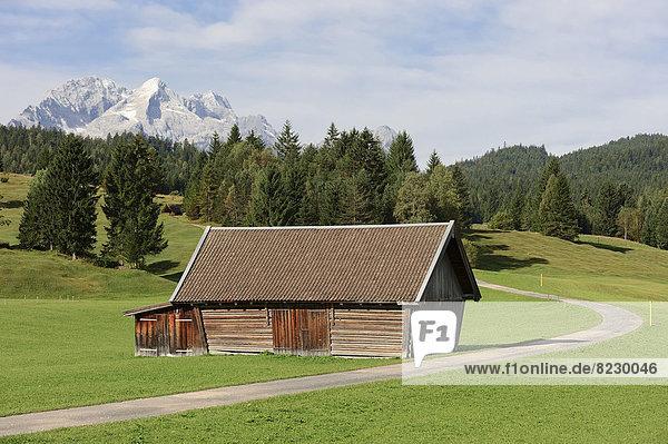 Almwiese mit Almhütte und Wettersteingebirge  Buckelwiesen