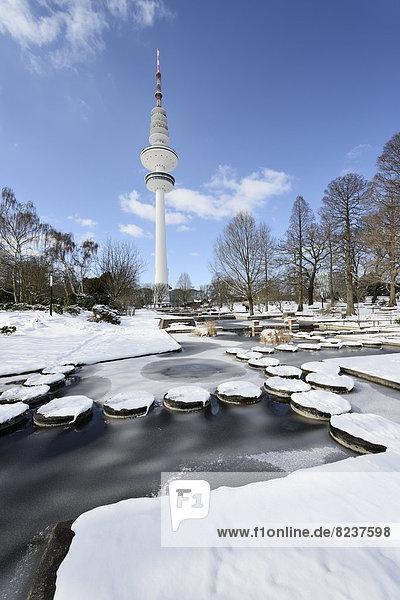 'Zugefrorenes Wasserbecken im Park ''Planten un Blomen''  hinten der Heinrich-Hertz-Turm'