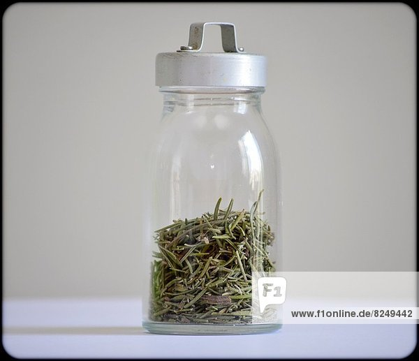 Glass pot with spices: rosemary. Gray background.