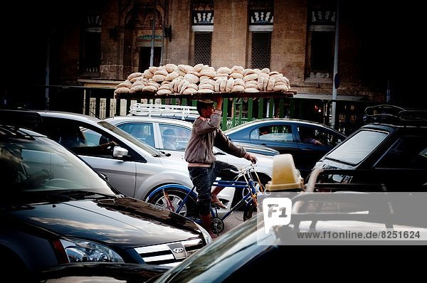 Kairo  Hauptstadt  Transport  Brot  Straße  beschäftigt
