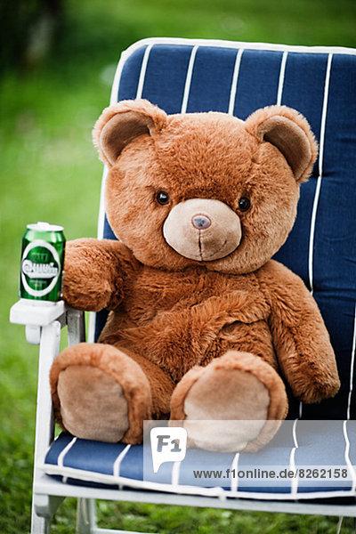 Bär  Stuhl  Teddy  Teddybär  Bier  Sonne