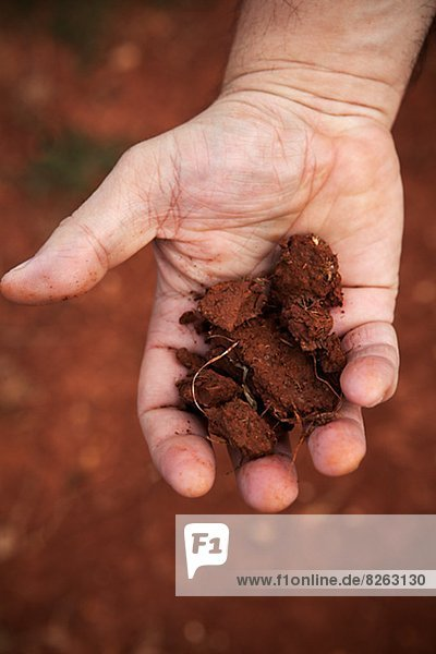 Erde  Erdreich  Boden  Mensch  rot