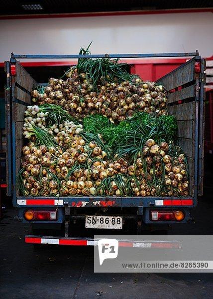 Lastkraftwagen  Zwiebel  voll