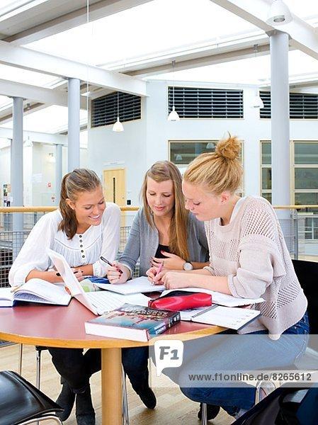 Junge Frauen studying together