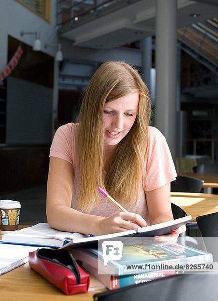 Cafe  lernen  Student  Universität