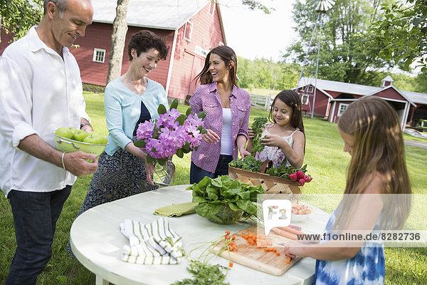 Frische liegend liegen liegt liegendes liegender liegende daliegen Party Frucht Menschliche Eltern Gemüse Salat Tisch