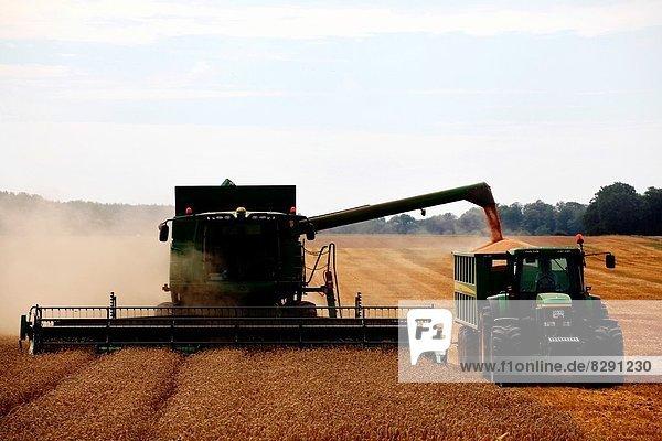 Traktor  ernten  Mähdrescher  abladen