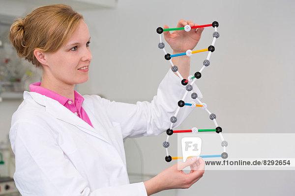Wissenschaftlerin mit DNA-Molekularmodell im Labor