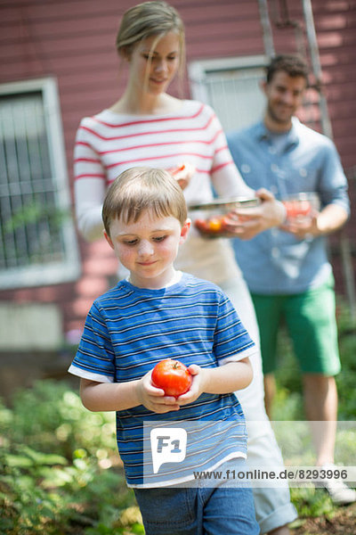 Boy holding apple with parents in background