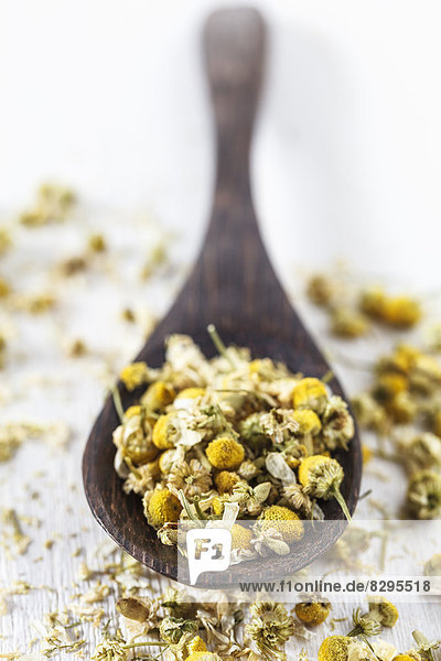 Dried chamomile on spoon  studio shot