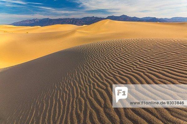 Mesquite Flat Sand Dunes  Death Valley National Park  California  USA  America.