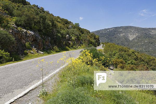 Landstraße nach Termessos