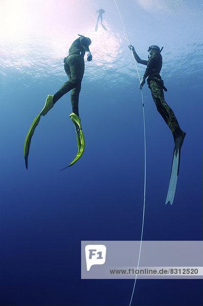 Freitaucher mit Schwimmflossen
