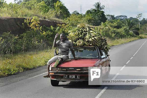 Bananentransport mit einem PKW