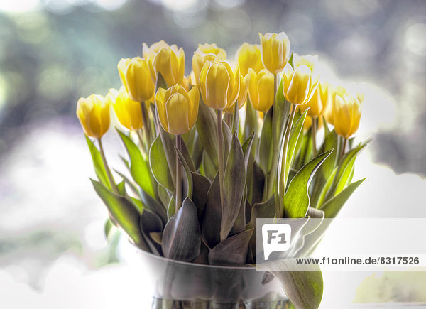 Strauß mit gelben Tulpen