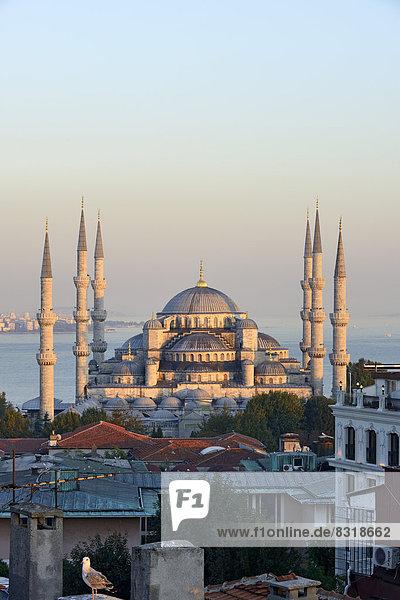 König Abdallah Moschee Blaue Moschee Blaue Moschee Sultan-Ahmet-Moschee Moschee UNESCO-Welterbe