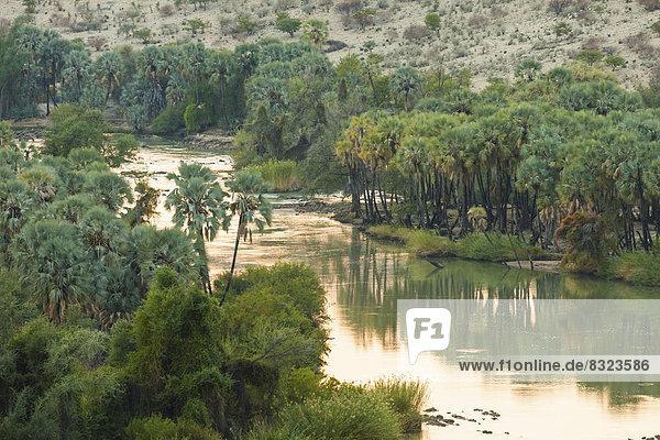 Kunene  Grenzfluss zwischen Namibia und Angola  im Morgenlicht