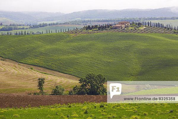 Landschaft Hügel Geographie Kreta