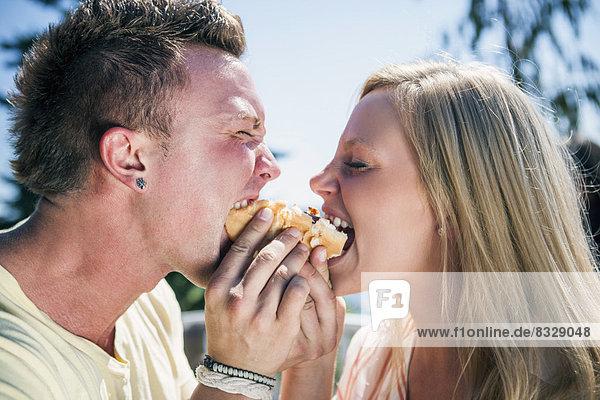 Hot Dog Hot Dogs Mensch Einzelperson eine Person Menschen jung 1 essen essend isst