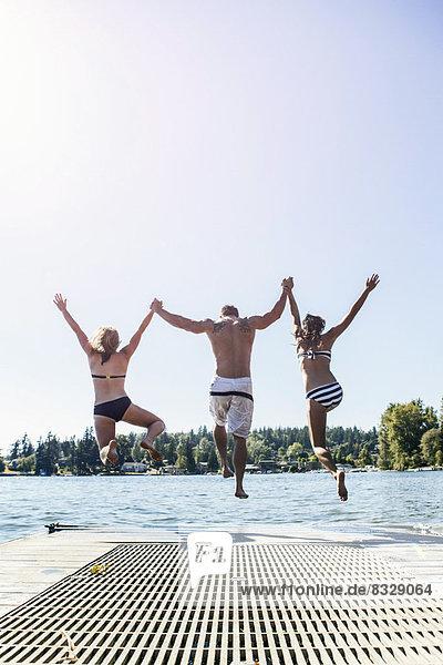 Mensch, Menschen, See, springen, Steg, jung