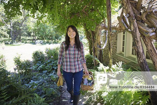 Frau  arbeiten  Frucht  Gemüse  Bauernhof  Hof  Höfe  Wachstum  verkaufen  jung  Pflanze