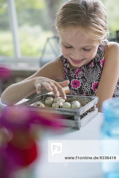 Ein junges Mädchen in einem Blumenkleid  das ein Gelege gesprenkelter Vogeleier in einer Schachtel untersucht.