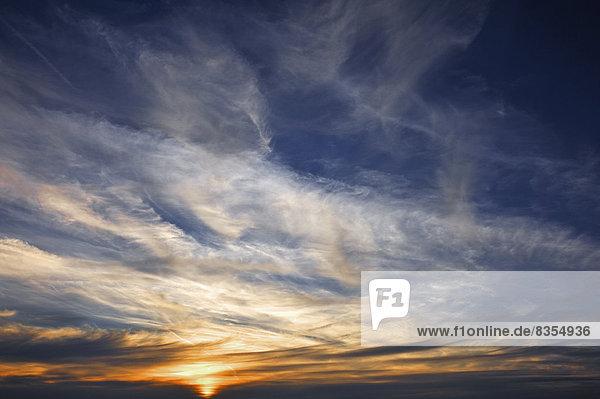 Federwolken (Cirrus) mit untergehender Sonne  Mittelfranken  Bayern  Deutschland