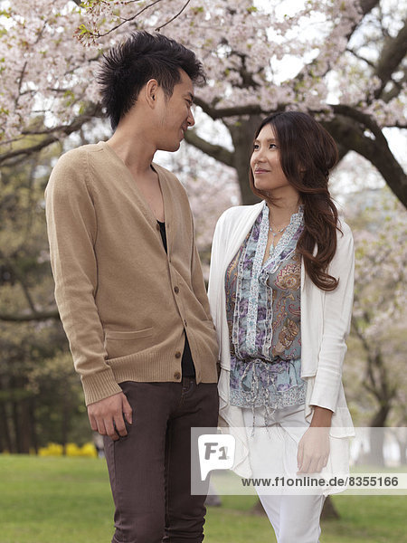 Couple standing in a park under blooming cherry trees  Ontario Province  Canada