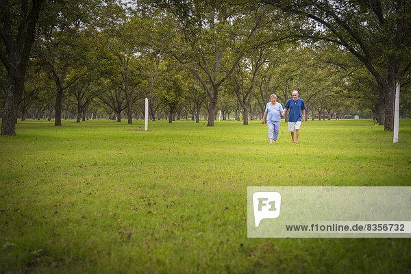 USA  Texas  Seniorenpaar zu Fuß im Park